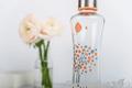 Ekologická sklenená fľaša EQUA SQUEEZE Peach Tree 550 ml
