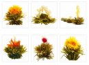 Kvitnúce čaje